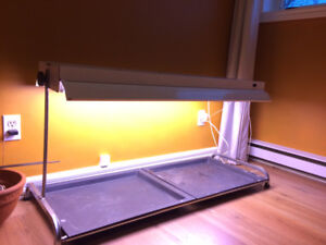 Grow Light - table top