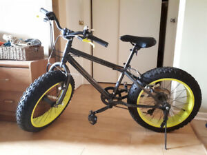 Carbon Fat Tire 7 Speed Bike For Sale!!