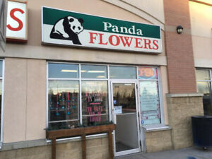 Calgary Flower Shop For Sale