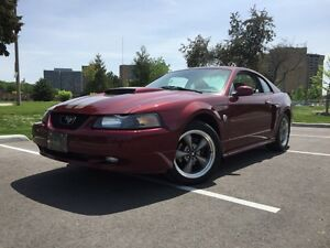 2004 Ford Mustang GT • 40th Anniversary •
