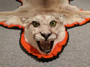 Cougar/Mountain Lion Rug ***NEW PRICE***