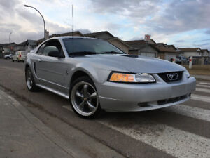 "Beautiful ""35th Anniversary Adition"" 3.8L V6 MUSTANG!"