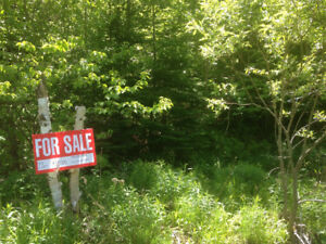 Beautiful Wooded Lot Close to Inverness, Cape Breton