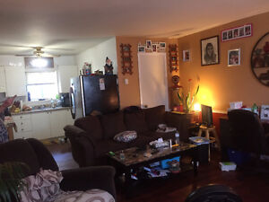 Jan-free-NewRenoLG2BDRM mainFloor-$900-inclu downtown Alexandria