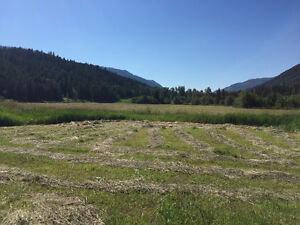 79 acres west of Todd Mountain