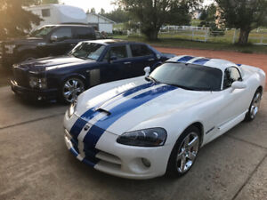 COLLECTOR AUTOGRAPHED VOIP edition VIPER!!!