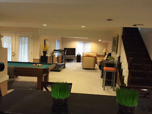 specious one bedroom in walk-out basement for rent Kitchener / Waterloo Kitchener Area image 1