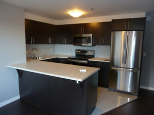 RENOVATED 1 BR APT ON SPRING GARDEN AVAILABLE FOR RENT ASAP