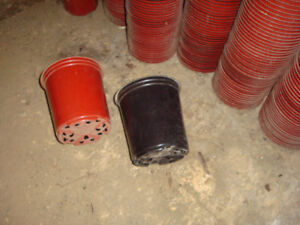 Plastic pots for small plants 6 inches