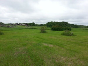 Over 1/2 Acre Lot at Pelican Point at Buffalo Lake