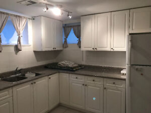 Newly Renovated 2 large Bedrooms Basement Suite