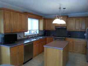 Oak Kitchen Cabinets with Countertop
