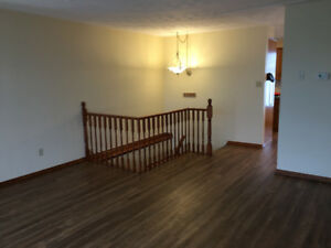 2 Bdrm Newly Renovated Apartment Available March 1st