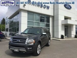 2017 Ford Expedition Platinum  - Sunroof -  Navigation