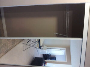 Nice 2 Bedroom Furnished Apartment in Terwillegar for July
