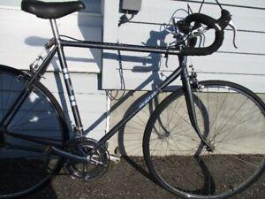 skyline road bike EXCELLENT SHAPE