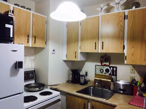 Bachelor Apartment Downtown Available after May 18