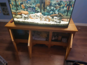 Fish tank with custom stand