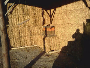 Wheat straw for sale Cambridge Kitchener Area image 2