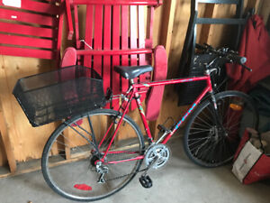 Used Adult Bicycle