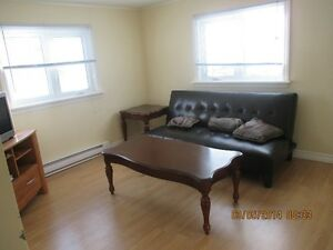 2 or 3 bdr house for rent. BayBulls Ocean View Available Now St. John's Newfoundland image 8
