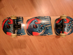 Santa Cruz board with Thunder trucks