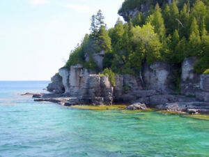 In search of cottage for rent in Tobermory!