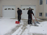 Shovel Driveway and Sidewalks in Warman and Osler for $10