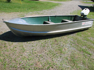 12 ft Princecraft with 5.5 hp Ted Williams Outboard motor