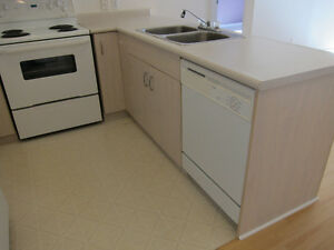 Two Bedroom - 2 Bathroom Condo in Downtown Amherstburg Windsor Region Ontario image 3