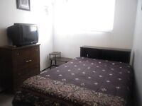Room for Rent - Glendale Area