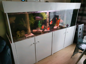 7 foot tank for sale