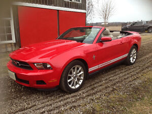 2010 Ford Mustang Pony Convertible