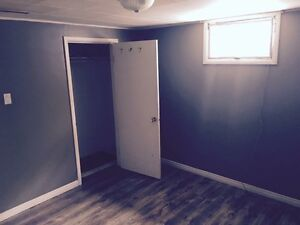South side basement suite close to College