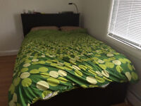 Queen Brimnes Bed with 4 Storage Drawers and Bookshelf Headboard