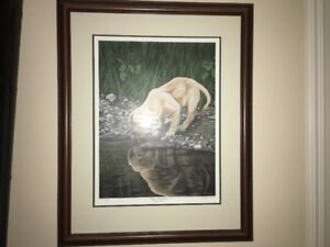 Ducks Unlimited Prints / pedestal mounts /ducks