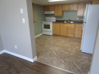 For rent a two bedroom basement apartment