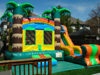 Brantford Bouncy Castle Special $165.00 Monday-Friday ONLY