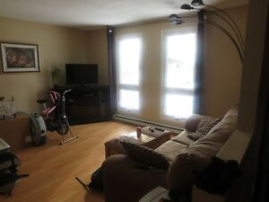 Student Rental: May 1st 3 or 4 Bedroom Semi near College and LU