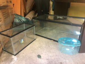 Used Aquariums - Different Sizes - Great Condition