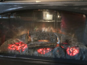 Fireplace Insert - Heater
