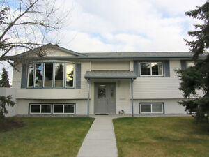 South Edmonton Renovated House For Sale