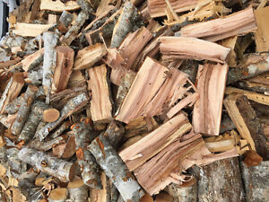 Seasonal Firewood for Sale cut and split or 8ft Length