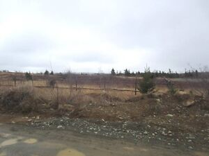 Cabin Country - Second Pond Rd - Bay Roberts - MLS 1132824 St. John's Newfoundland image 4
