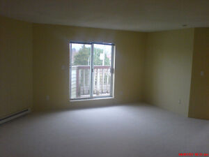 Large 1 Bedroom condo in Richmond