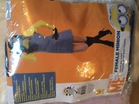 Adult ladies minion costume