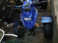 Barossa 250cc quad