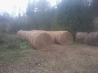 STRAW / HAY FOR SALE