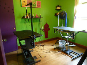 DOG GROOMING FOR SMALL DOGS- DOGGIE DAY HEAVEN GROOMING.