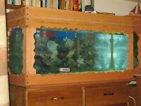 Lot de 4 aquariums